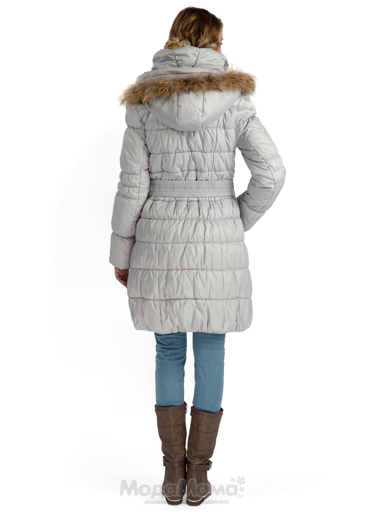 Купить недорого женскую одежду 62 размера